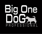 Big One Professional