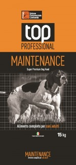 Top Professional – Maintenance